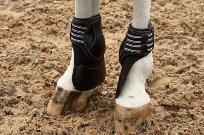 boot 7